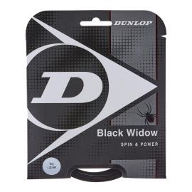 Dunlop Black Widow 16 String